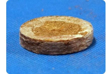 Торфяная таблетка (24мм)